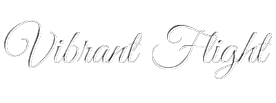 homepage vibrant banner