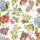 Flowers of Aotearoa