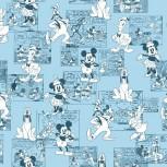 Mickey & Minnie Friends
