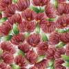 Pohutukawa Blossoms Col. 1 Cream