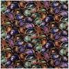 Paua Colour 1 Multi