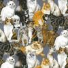 89780 Cats 1 Copy
