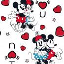 Mickey & Friends Col. 103 - Due Feb/Mar