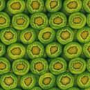 Kiwifruit Col. 101 Green