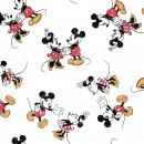 Mickey & Minnie Col. 102
