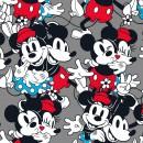 Mickey & Friends Col. 104 - Due Feb/Mar