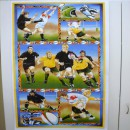 Running Rugby Col. 101 (60cm Panel)
