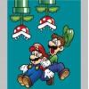 39950 Super Mario Colour 1