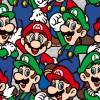 39950 Super Mario Colour 4